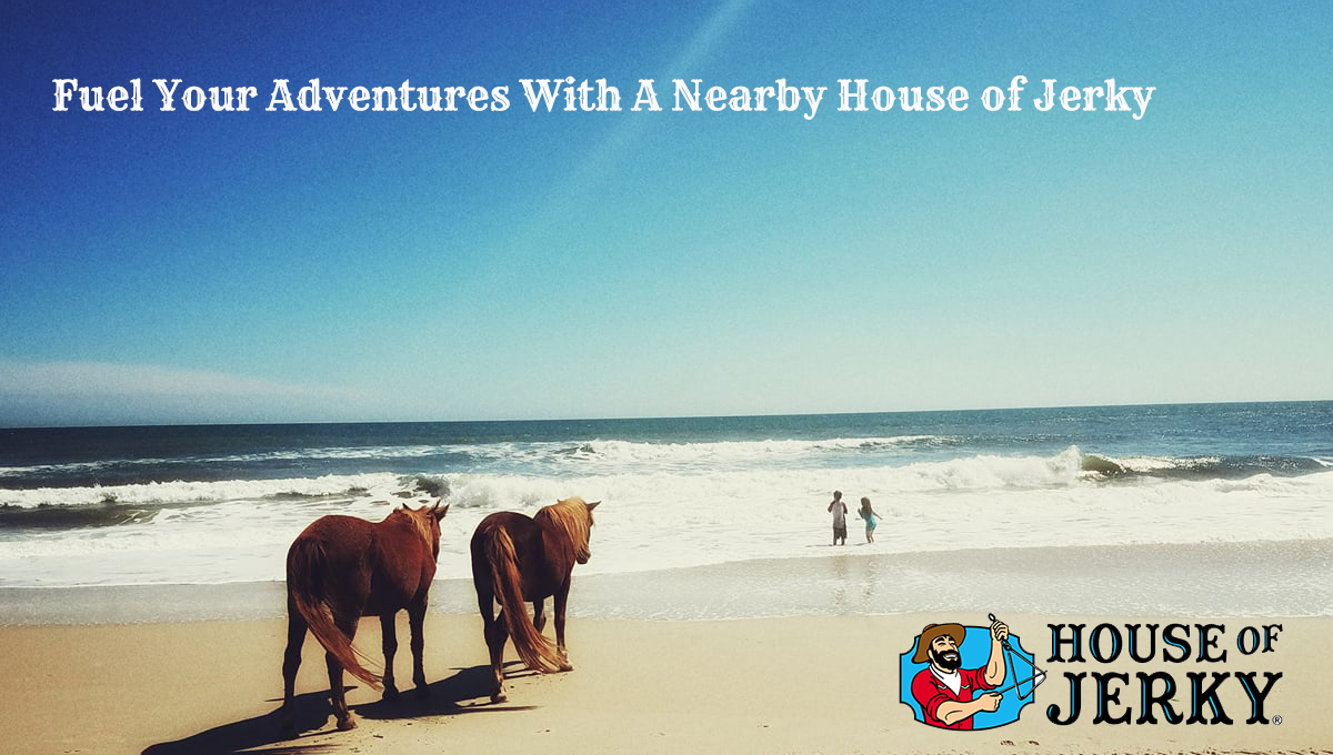 The words Fuel your adventures with a nearby house of jerky on the upper left with the house of jerky logo in lower right. The background is the ocean with two kids playing and two horses watching