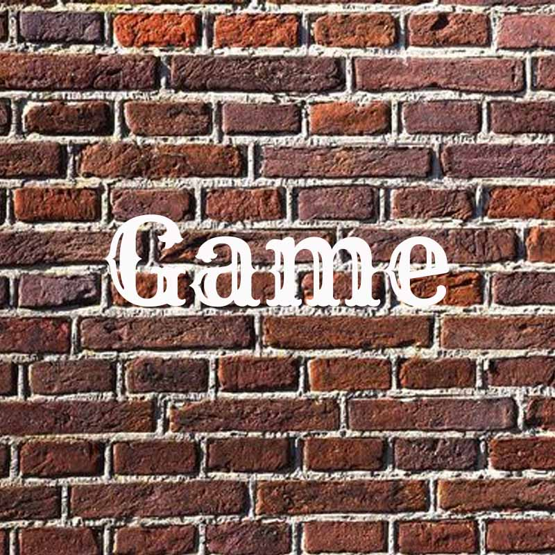 the word game on a brick background