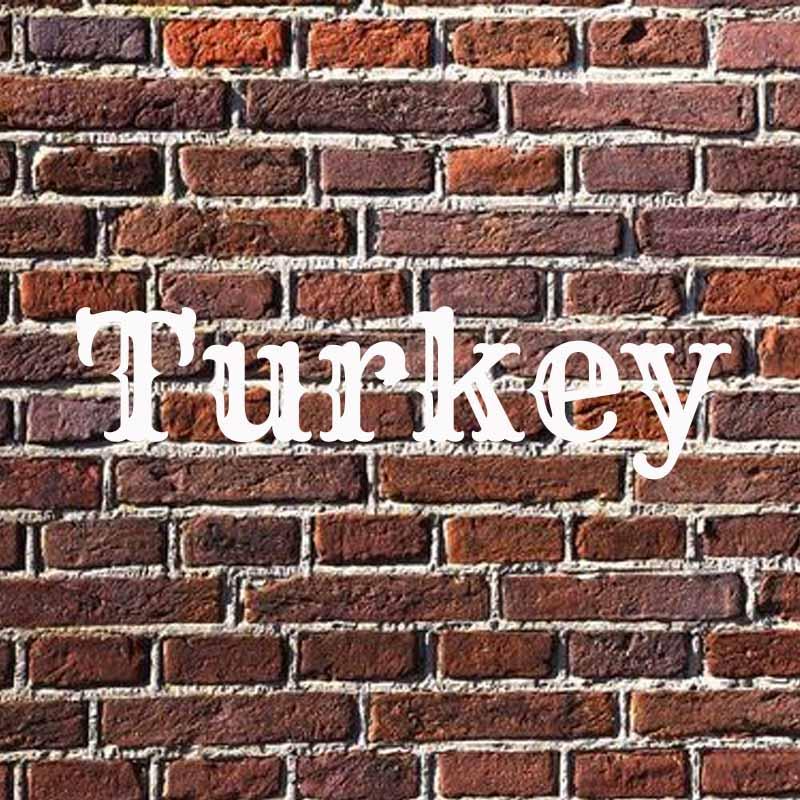the word turkey on brick background